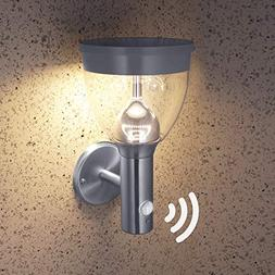 LED Outdoor Light Fixtures with Motion Detector and Dusk to